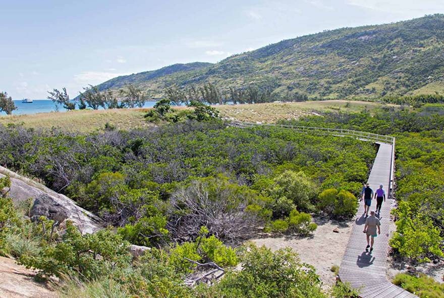 Walk with a naturalist to gain local insights and see the passion for Lizard Island.