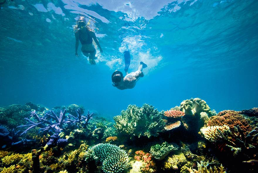 Explore the colourful reefs around Lizard Island with the Dive Package.